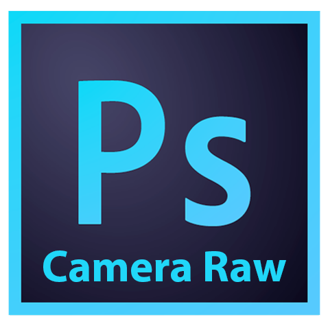 Curs Photoshop CC Camera RAW 9 | Microgestio